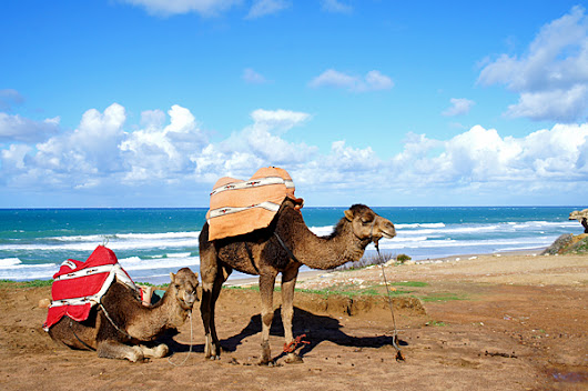 Morocco Holidays Explore Beautiful destinations         |          cheap morocco holidays
