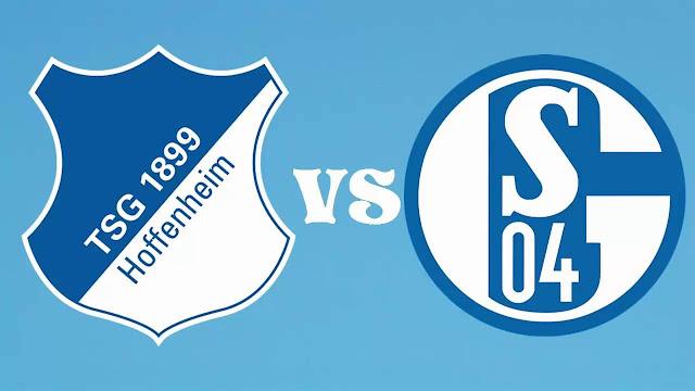 Hoffenheim vs Schalke 04 Full Match & Highlights 23 September 2017