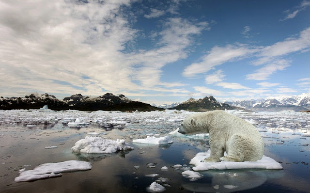 Ancaman Virus Raksasa Kuno di Balik Es Arktik