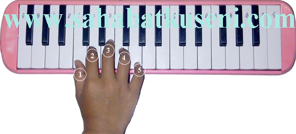 belajar memainkan pianika pemula