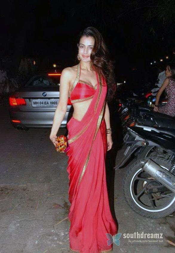 Amisha Patel In Sexy Saree  Sexy Pics-1355