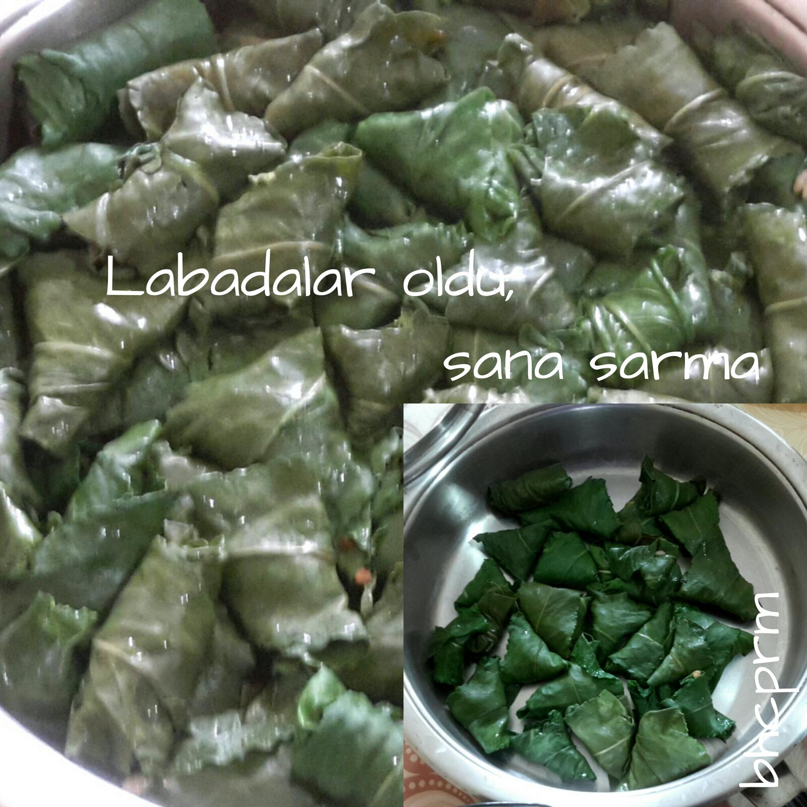 Efelek (Labada) Sarması Tarifi