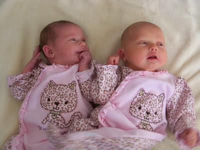 bayi-kembar-mungil