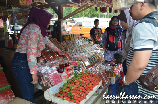 Strawberry Kawah Putih Ciwidey