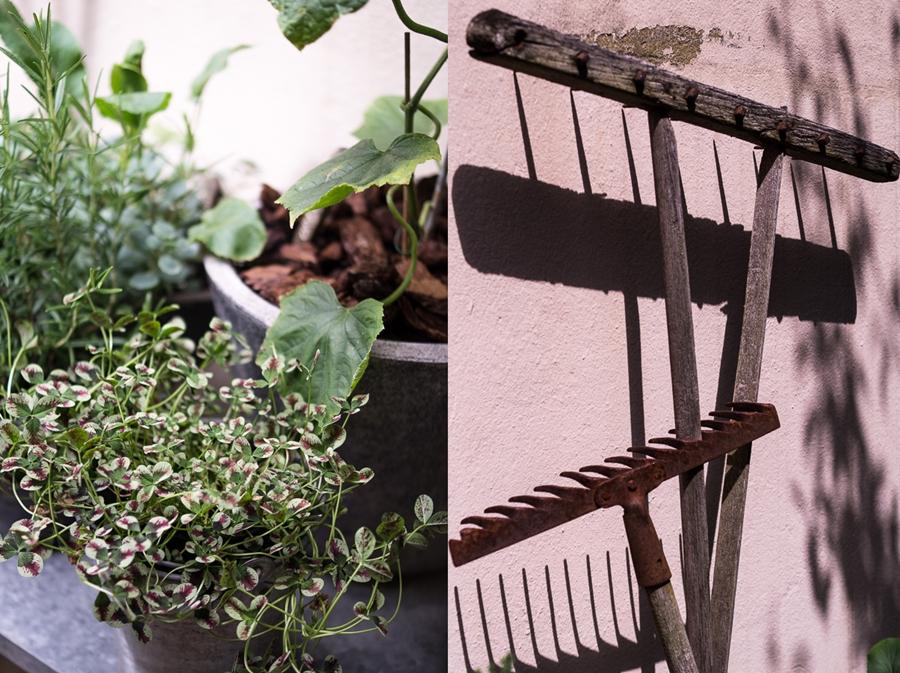 Blog + Fotografie by it's me! | fim.works | Bunt ist die Welt | Garten im Juni 2016 | bunter Klee | alter Rechen, alte Harke im Sonnenlicht
