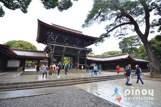 Must-see shrines in Tokyo Tourist Spots Japan