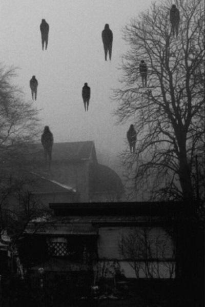 Photographie noir et blanc horreur foret halloween