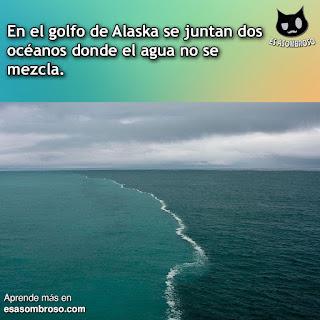 En Alaska se junta dos océanos donde el agua no se mezcla