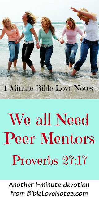 As Iron Sharpens Iron, Peer Mentors, Christian Mentoring