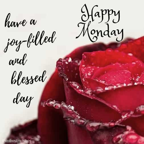 happy monday have a joy filled and blessed day