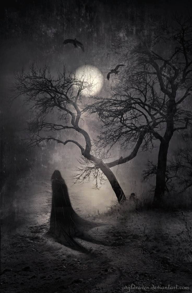 08-Nocturnal-Whisperings-wyldraven-Surreal-Night-Time-Photo-Manipulation-www-designstack-co