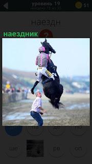 Крутой наездник на лошади, которая поднялась высоко и сбрасывает жокея