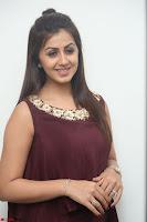 Nikki Galrani in a Brown Shining Sleeveless Gown at Nakshatram music launch ~  Exclusive 064.JPG