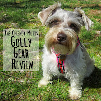The Chesnut Mutts Golly Gear Review