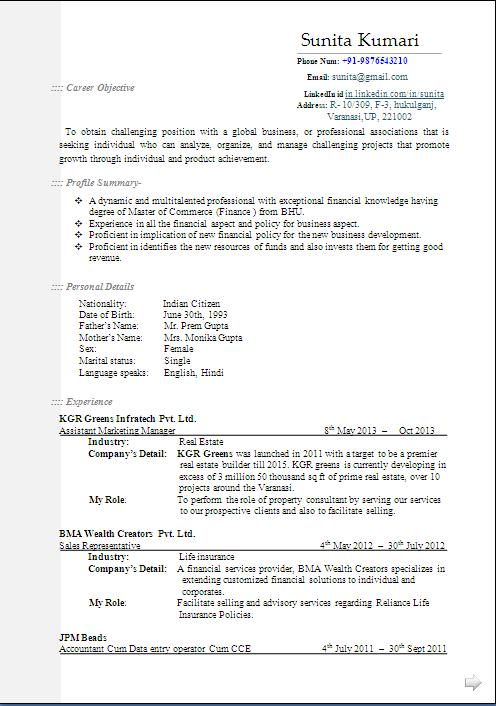 real estate marketing manager resume format in word