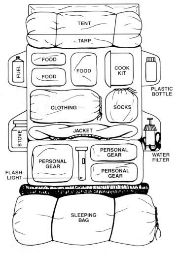 Cara Packing