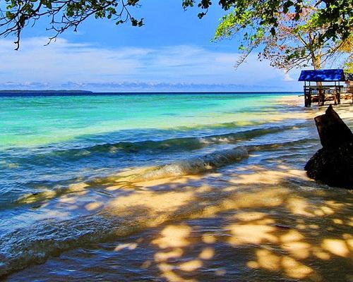 Tinuku.com Travel Bosnik Beach on Biak island presents unique color gradation coastal seawater, beautiful sand and shady trees