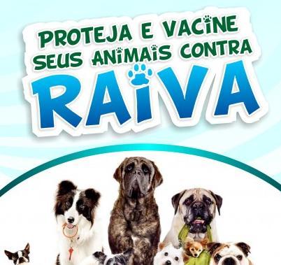 Campanha de vacinação anti-rábica acontece em Muriaé e seus distritos em agosto