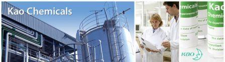http://jobsinpt.blogspot.com/2012/03/pt-kao-indonesia-chemicals-vacancies.html