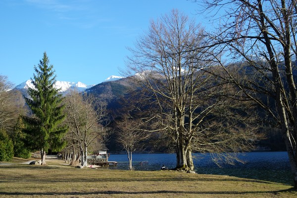 slovénie lac bohinj