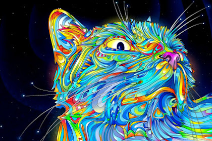 Cat Logo Hd Wallpaper