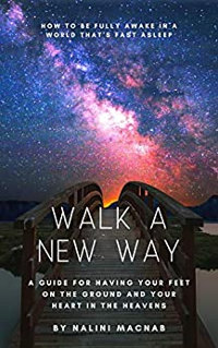 Walk a New Way: A Woman's Journey of Awakening into a World That's Fast Asleep by Nalini MacNab