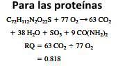 Sistema energético aeróbico o sistema oxidativo