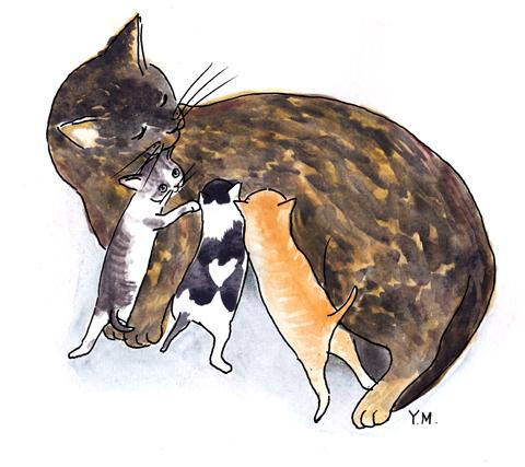 cat family by Yukié Matsushita