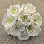 http://przydasiepasjonatypl.shoparena.pl/pl/searchquery/magnolie/1/phot/5?url=magnolie