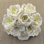 http://przydasiepasjonatypl.shoparena.pl/pl/p/Biale-magnolie-5-szt./1213