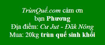 Trùn quế Cư Jut - Đăk Nông