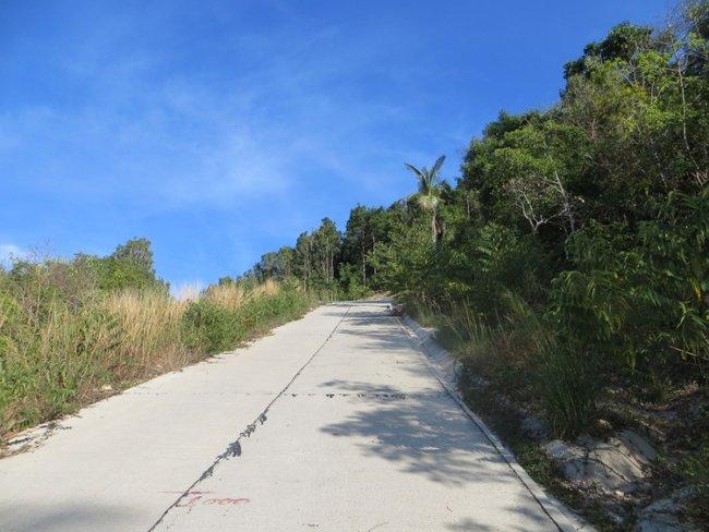 Новая бетонная дорога