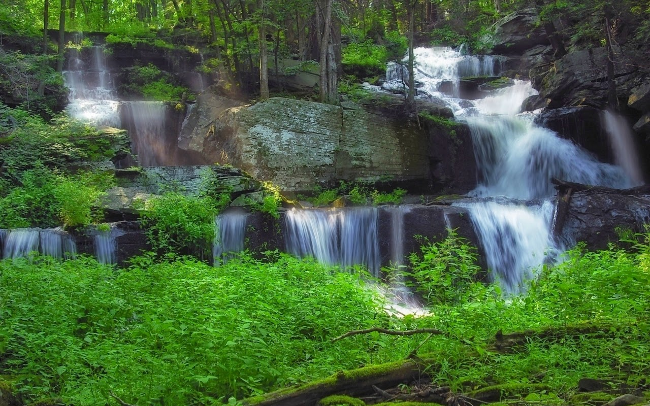 12 most beautiful waterfall wallpapers for desktop - Waterfalls desktop wallpaper forest falls ...