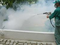 Dedetização do mosquito da Dengue em Porto Alegre e RS