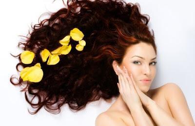 shampoo perawatan rambut terbaik