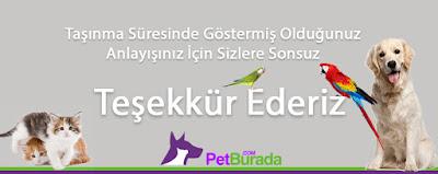 http://www.petburada.com/