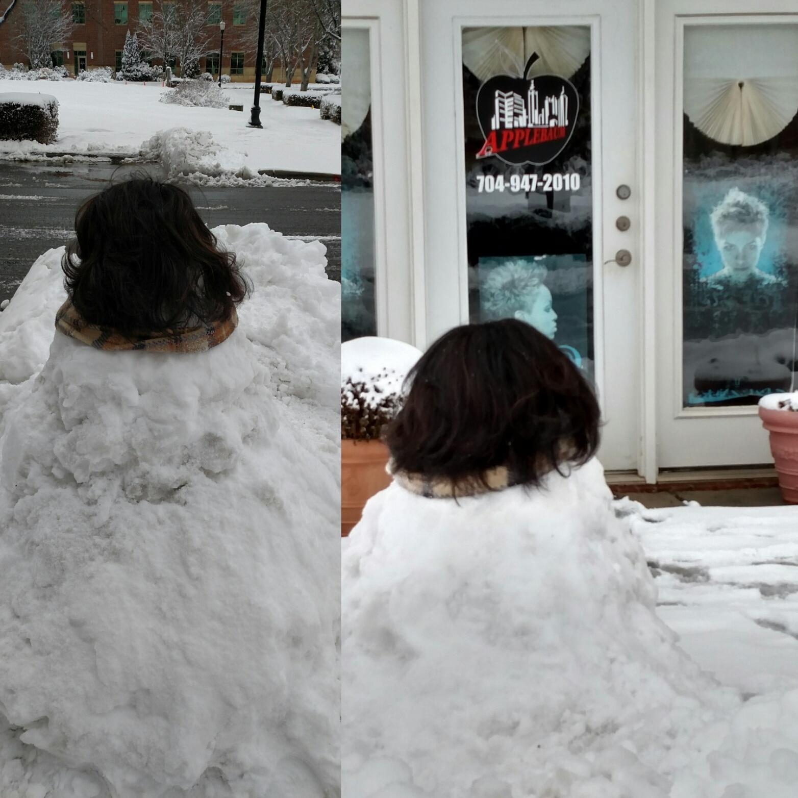 Phenomenalhaircare faux client january snow 2018 nvjuhfo Images