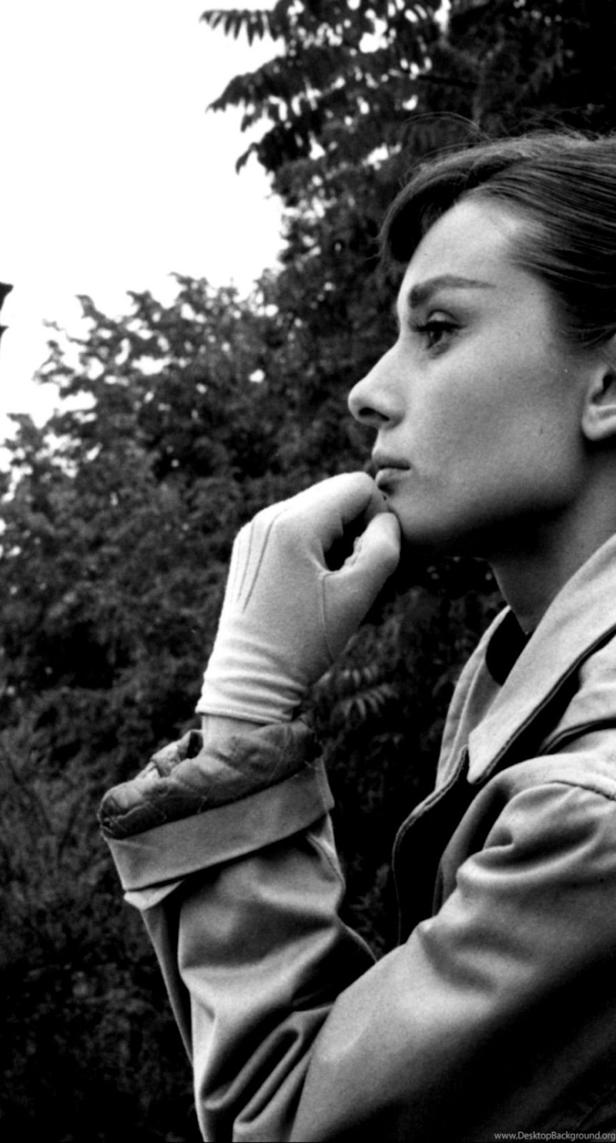 Audrey Hepburn Wallpapers Wallpapers Land