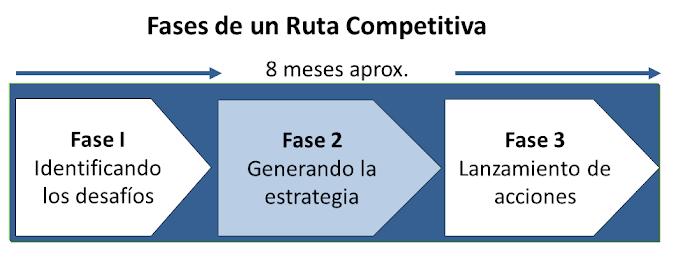 Fase 2: Generando la estrategia