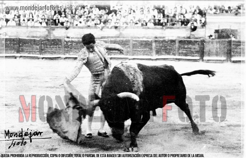 TOREROS DE ALBACETE: ABELARDO VERGARA