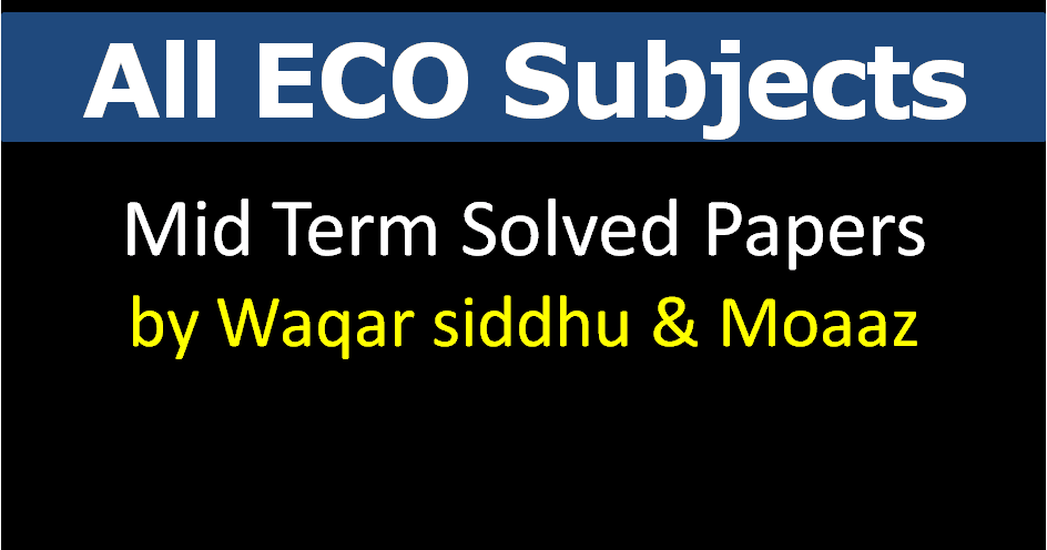 eco401 final term paper 2013