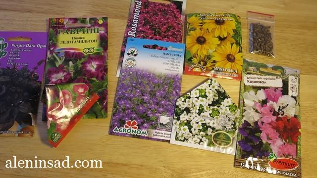 аленин сад, семена, сорта ипомеи, базилика, лобелии, рудбекии,алиссума, горошка душистого, чины, для посева на рассаду в марте
