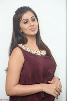 Nikki Galrani in a Brown Shining Sleeveless Gown at Nakshatram music launch ~  Exclusive 049.JPG