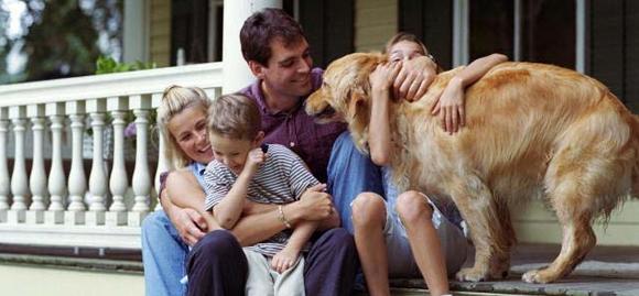 Eternos Apaixonados : Eu, Você, Dois Filho E Um Cachorro
