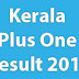 Kerala HSE First Year Plus One Result 2017 DHSE +1 Results 2017
