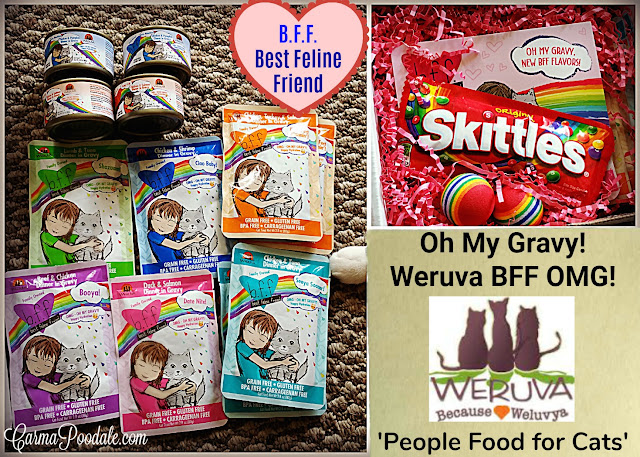 New #BFF (Best Friends Forever) OMG (Oh my gravy) Weruva cat food