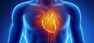 Ingin Jantung Sehat? Cobalah Konsumsi Makanan Ini