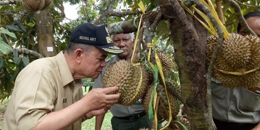 Wagub Nasrul Abit Kunjungi Balibu Solok, Ini Harapannya