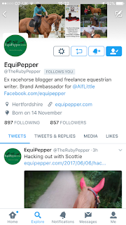 Equipepper Twitter Profile