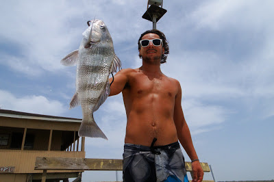 Scott Grundauser Black Drum Catch
